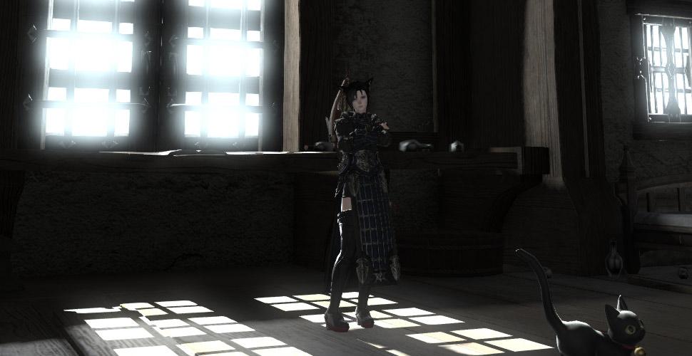 Final_Fantasy_XIV_erzi_25