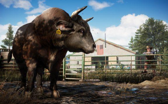 Far Cry 5 Bulle