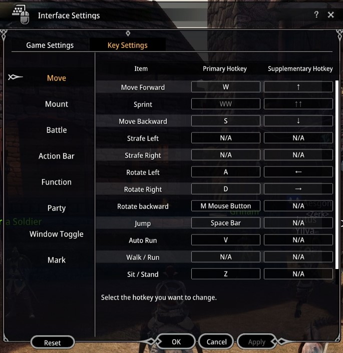 Bless Online Interface Settings