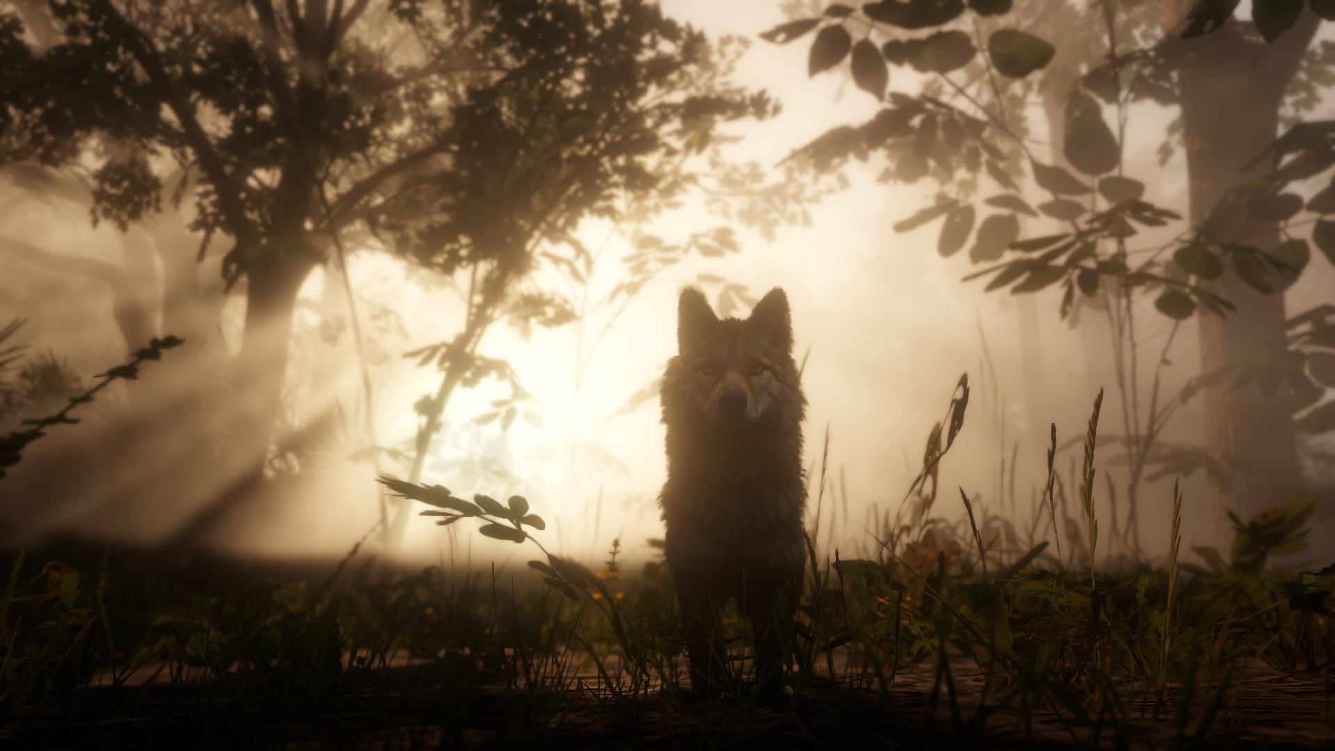 Red Dead Redemption 2 Wolf Wald 2