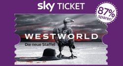 sky_ticket_meimo