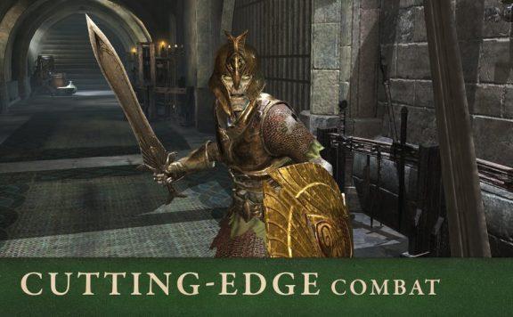 Elder-Scrolls-Blades-03