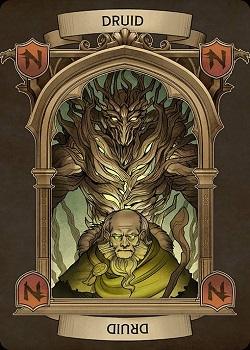 neverwinter-Ravenloft_Druid