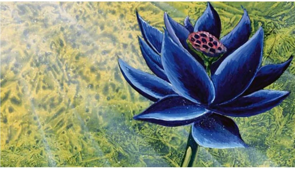 Schwarzer Lotus Magic