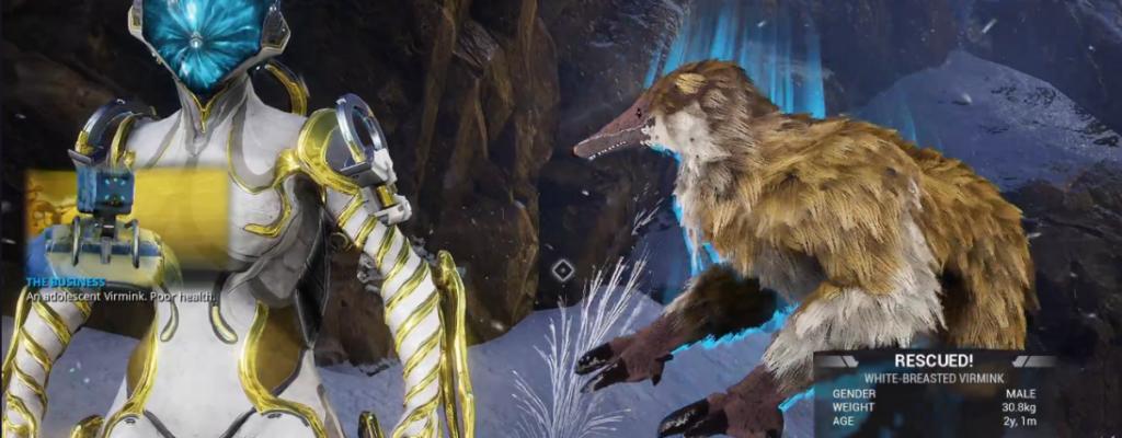 "Warframe trifft Pokémon: Das steckt hinter dem neuen Feature ""Tier-Jagd"""