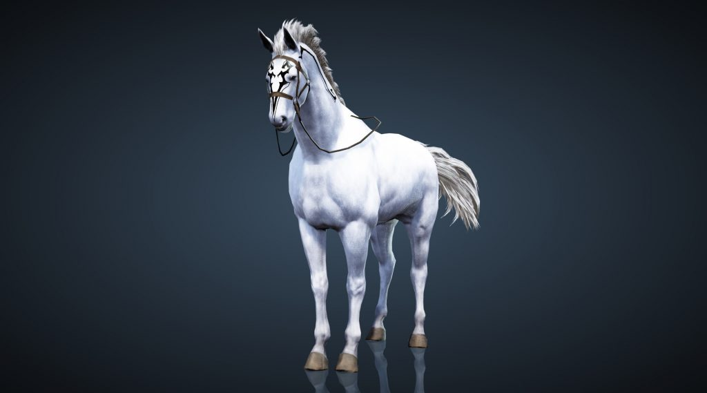 Black Desert Tier 7 Horse