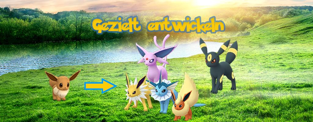 Pokémon GO: Evoli entwickeln – Mit Spitznamen und Kilometer-Trick