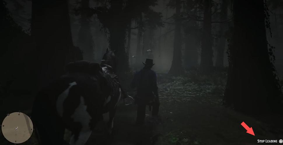 RDR 2 Pferd führen