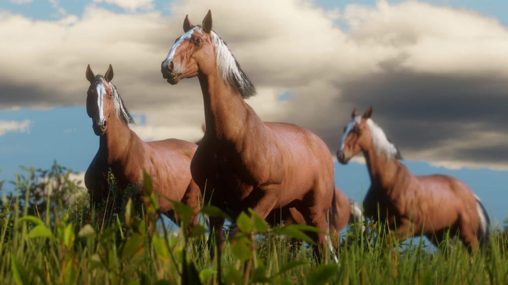 red dead redemption 2 pferde in der wildnis