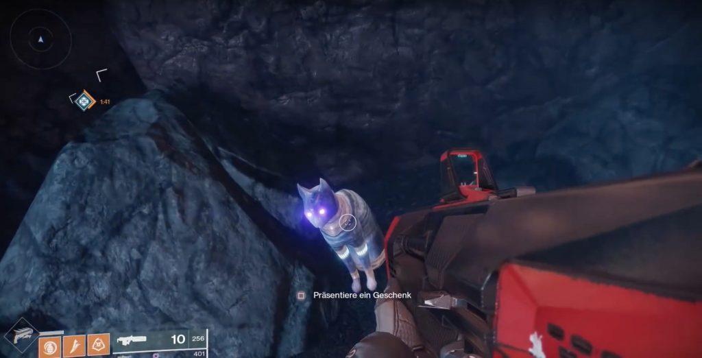 Destiny 2 Katzen 2