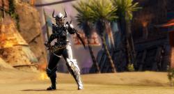 Elegie Rüstung GW2