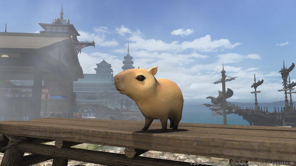 final fantasy xiv capybara belgeiter