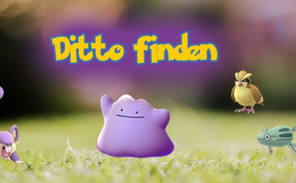 Pokémon GO Ditto Titel 2
