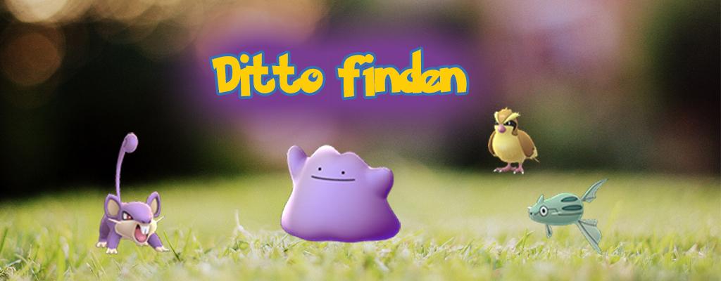 Pokémon GO: Ditto Liste – Mit diesen Monstern könnt Ihr Ditto fangen