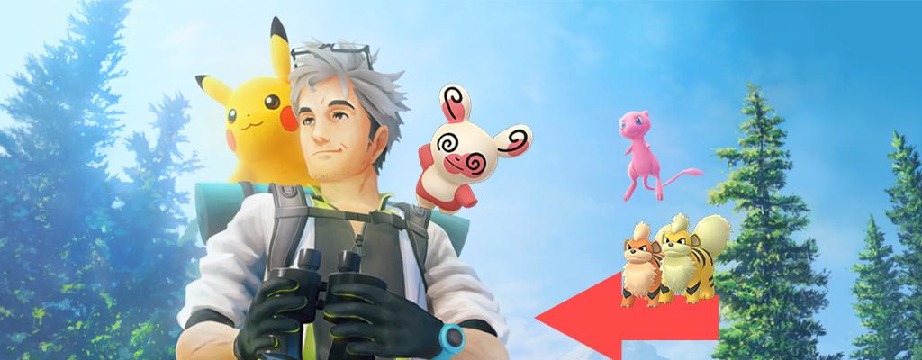 Pokémon GO: Neue Pandir-Form und Shiny jetzt in den Feldforschungen
