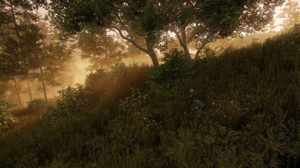 newworld Landschaften 6