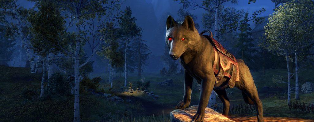Elder Scrolls Online: Gewinnt ein seltenes Unheilswolf-Reittier