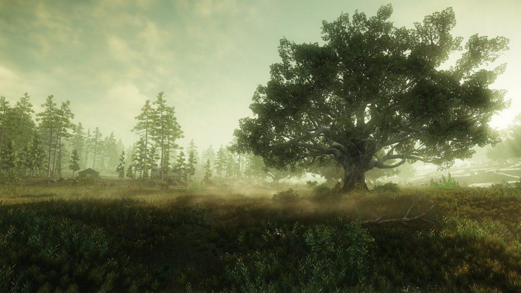 New World Grafik Nebel