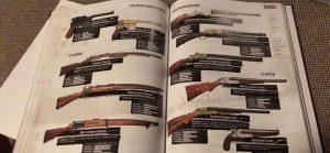 RDR 2 Waffen 2