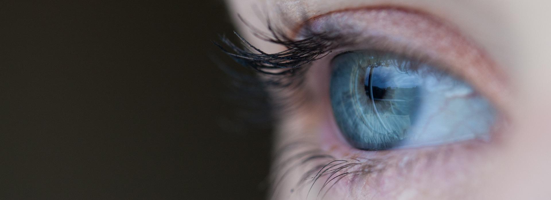 Ein Auge Toll Nicht Wahr sonst gibts nichts zu sehen