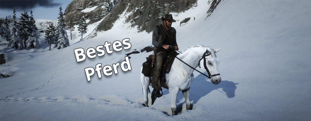 Red Dead Redemption 2 Weißer Araber bestes Pferd RDR 2