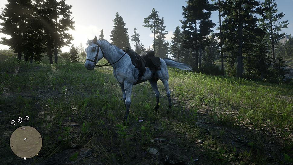 red dead redemption 2 bestes pferd