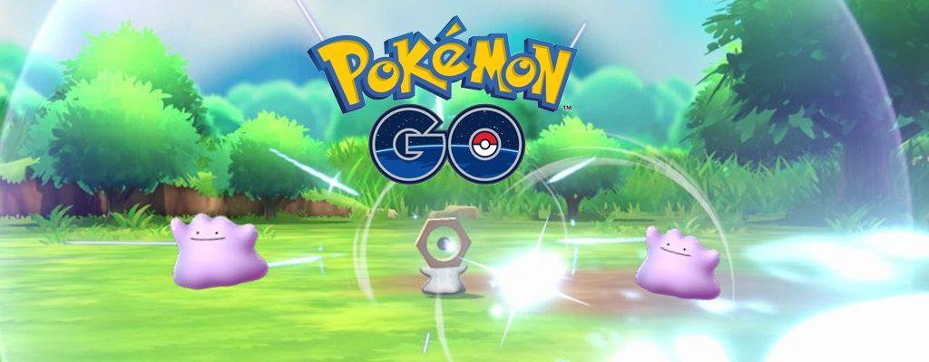 Titelbild Ditto Pokémon GO