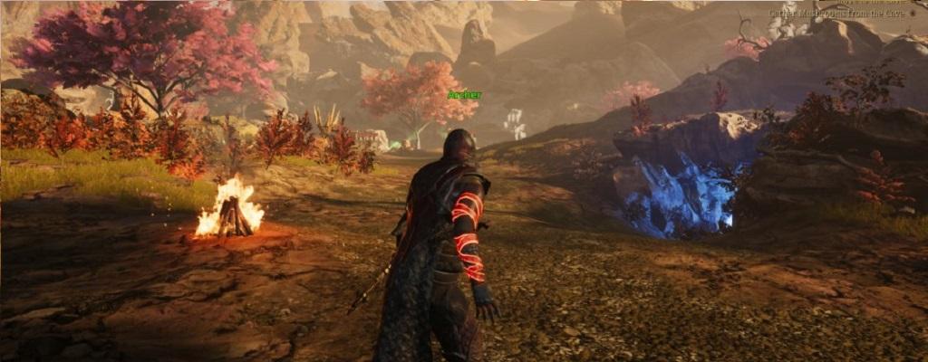 Ich glaube: Ashes of Creation wird als neues MMORPG Erfolg haben