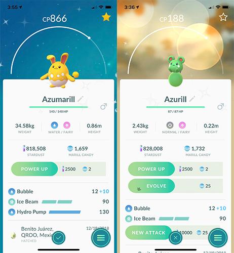 Pokémon GO Azurill Azurmarill Shiny