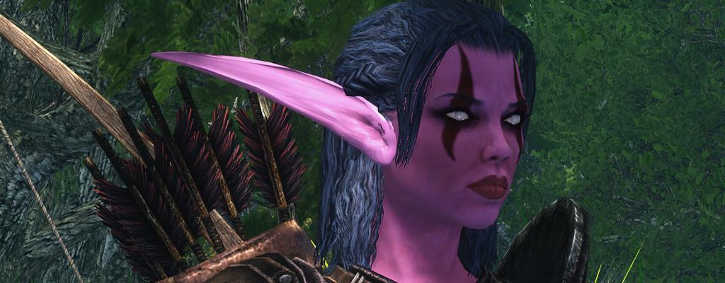 Ja, jemand baut die World of Warcraft in Skyrim nach