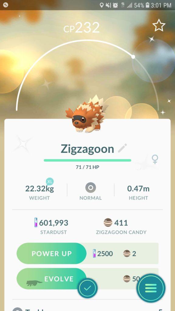 Shiny Zigzachs