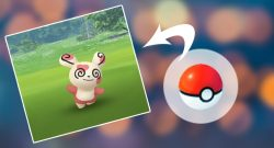 Pokémon GO Pandir Wurf Titel