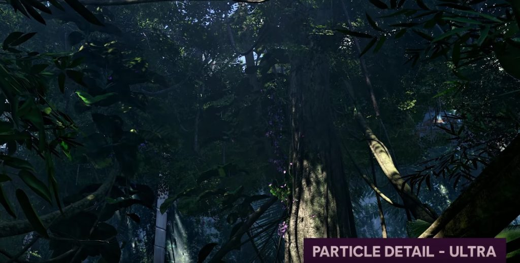 Division 2 -particle-high