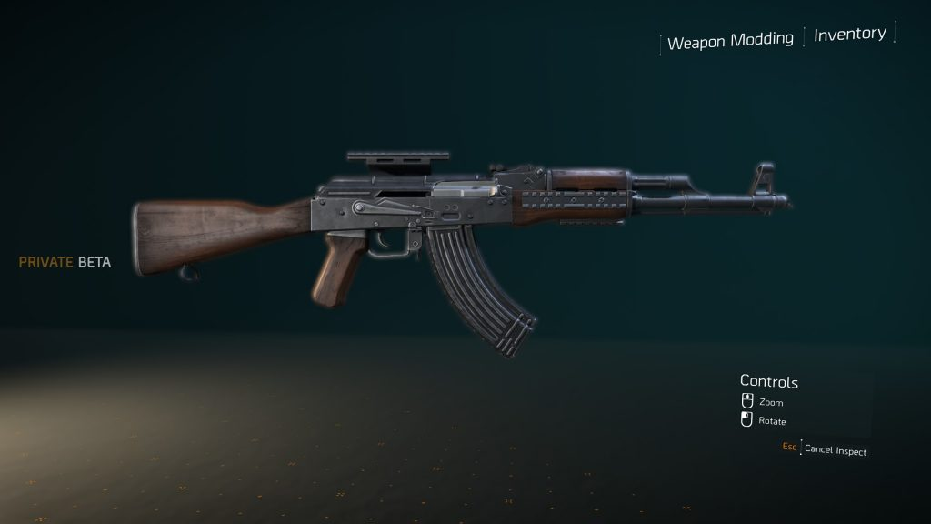the division 2 ak-m