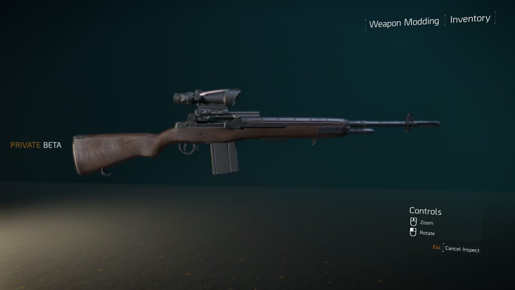 the division 2 classic m1a