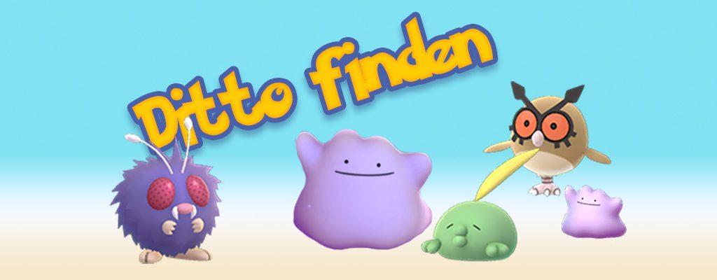 Ditto Pokemon GO