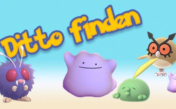Pokémon GO Ditto Finden Titel