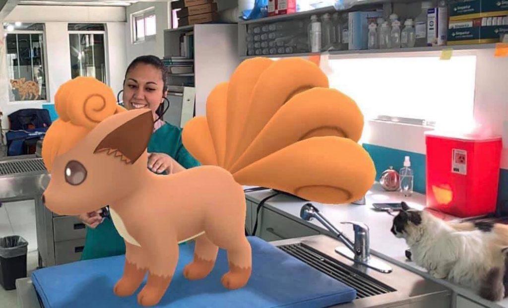 Tierarzt Pokemon GO Vulpix