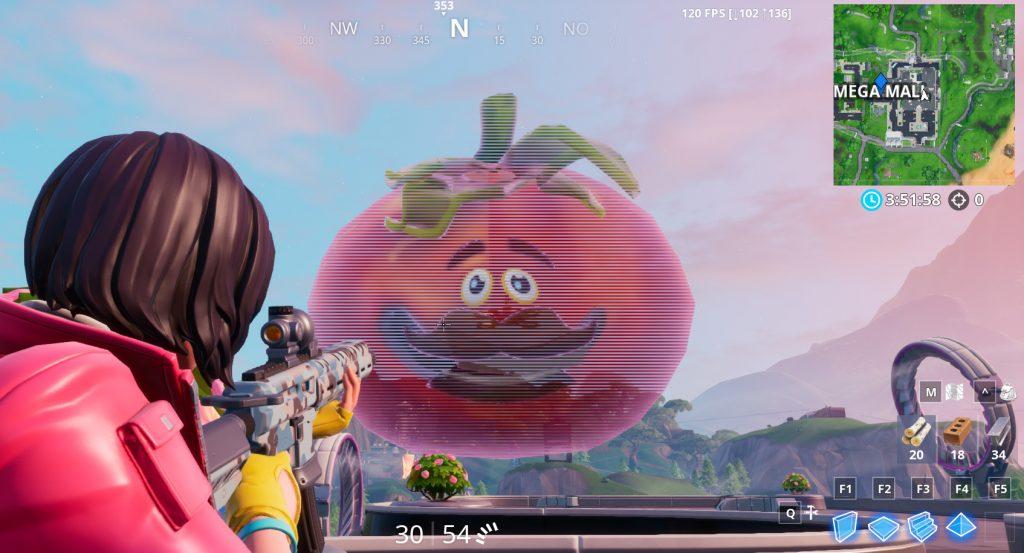 FN Tomatenholo
