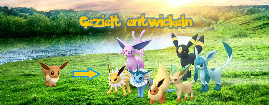 Pokémon GO: Evoli entwickeln – Mit Spitznamen, Kilometer-Trick und Lockmodulen