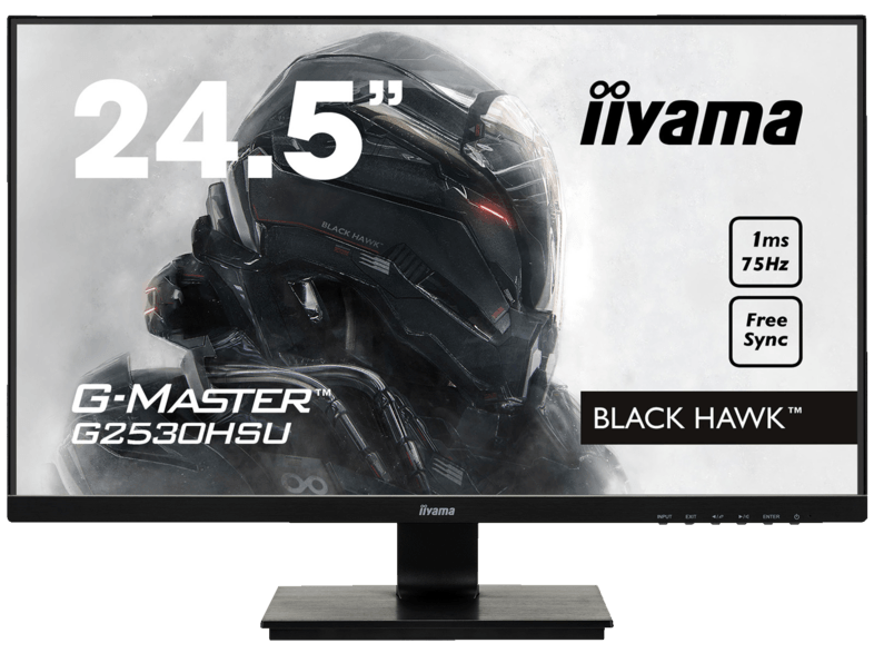 iiyama G-Master Black Hawk Gaming-Monitor