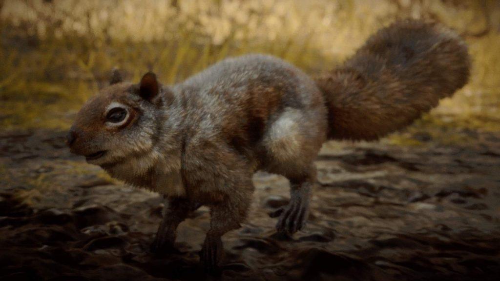 Red Dead Redemption 2 Eichhörnchen