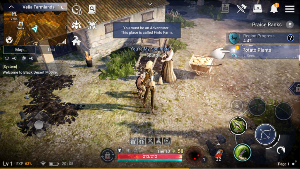 Black Desert Mobile Ingame Screenshot