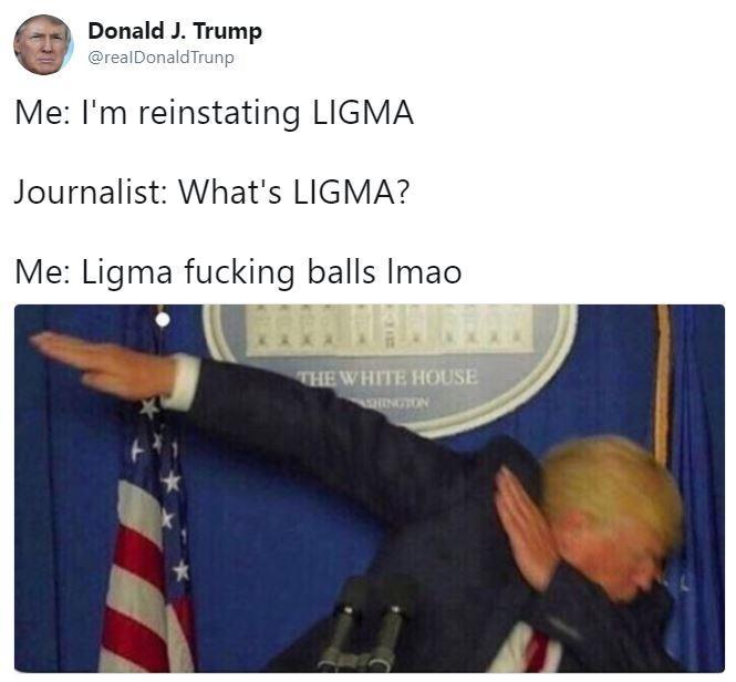 Trump-Parodie-Ligma