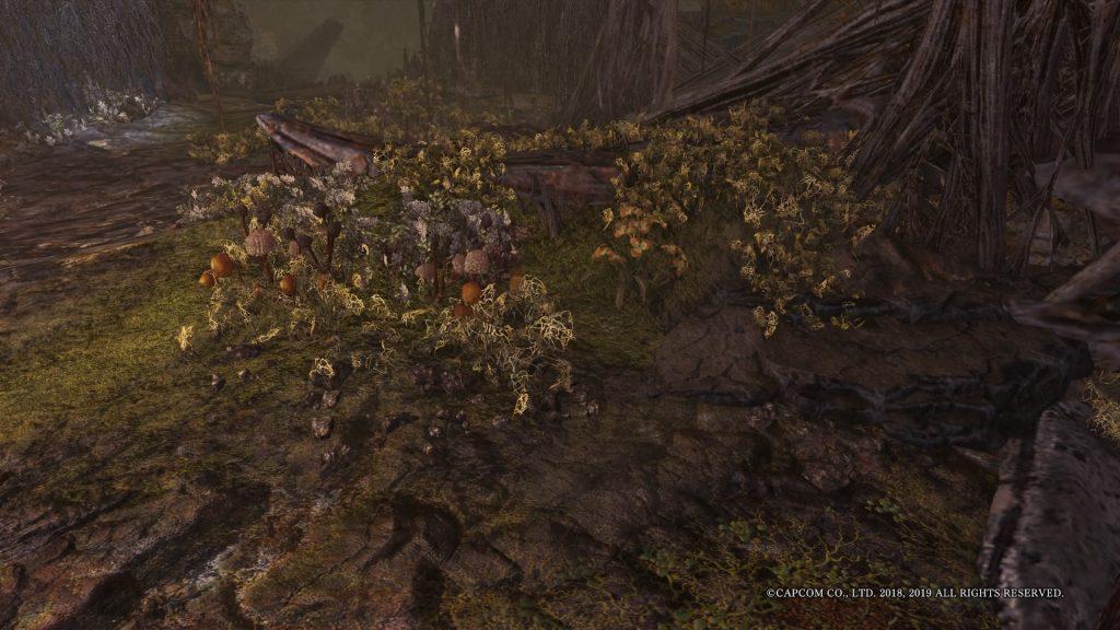 Monster Hunter World Mauli Verwesungsbiom