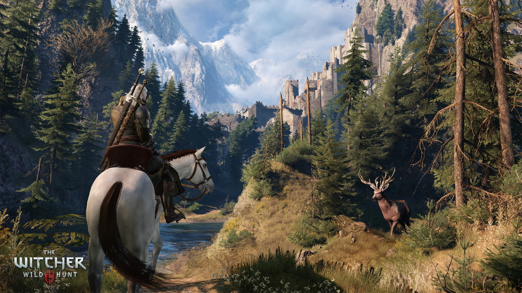 The Witcher 3 Wildnis
