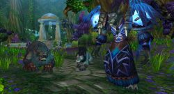 World of Warcraft: Druide