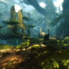 Guild-Wars-2-Biome-Boden