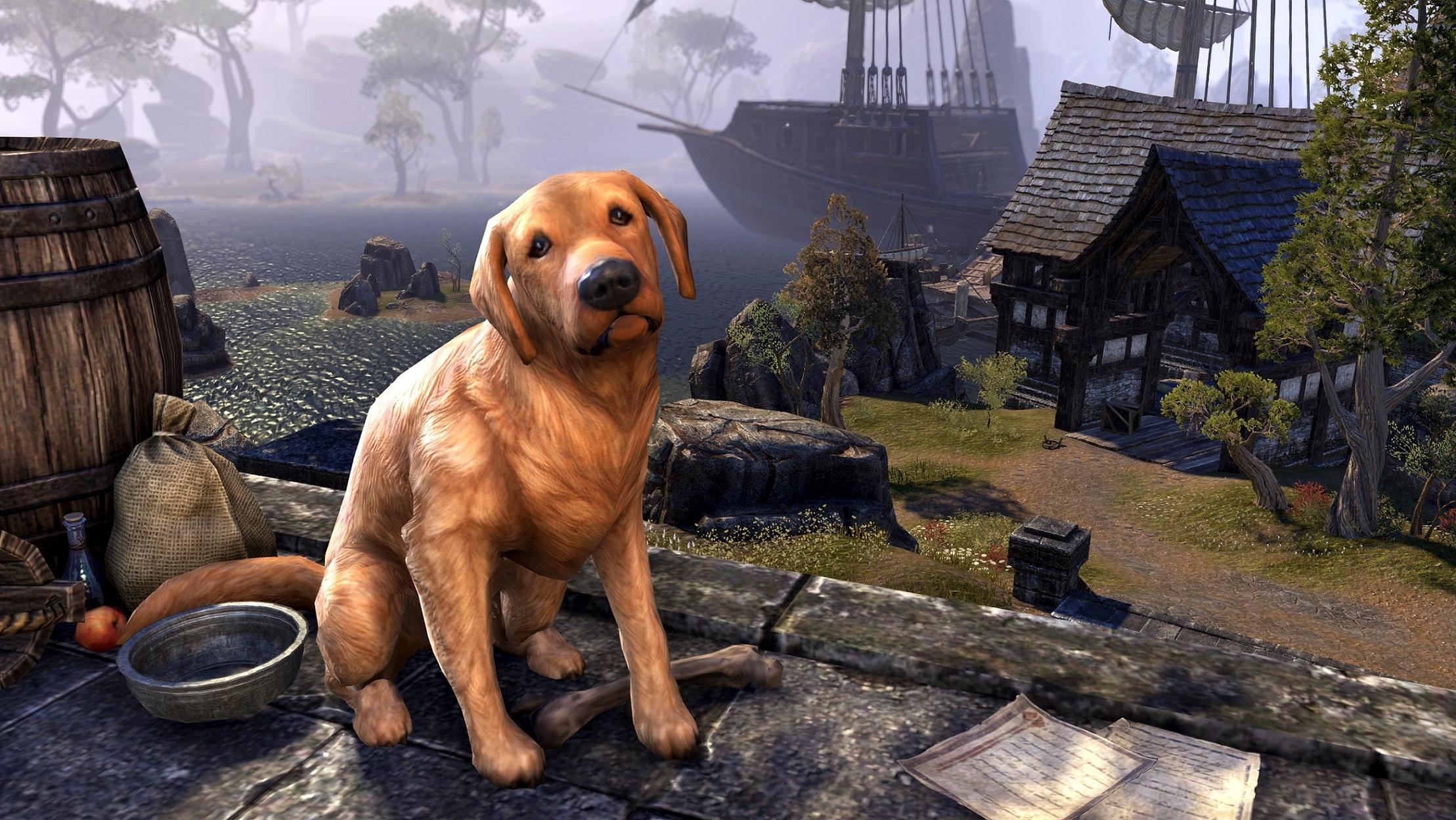 The Elder Scrolls Online: Hunde und fiese Viecher – TESO stellt neue Gefährten vor