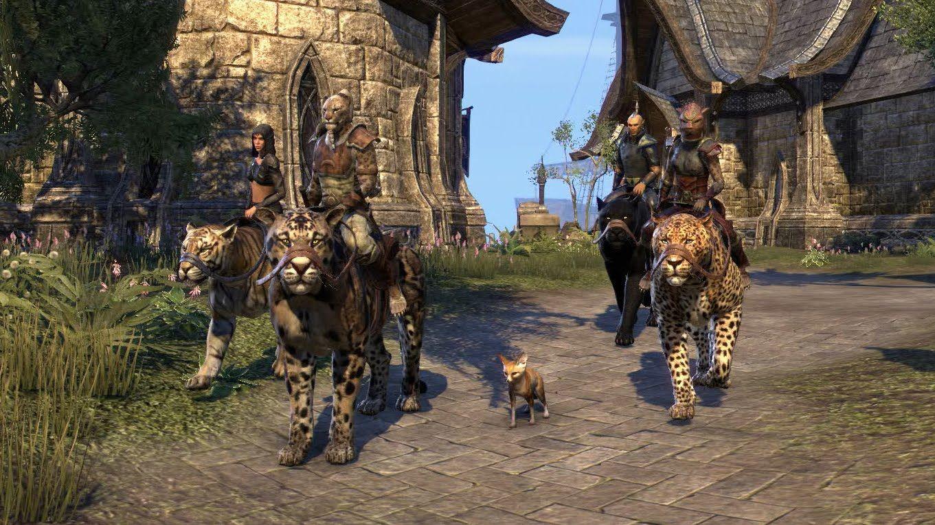 The Elder Scrolls Online: Für die einen der erste Tag, für andere das erste Jahr